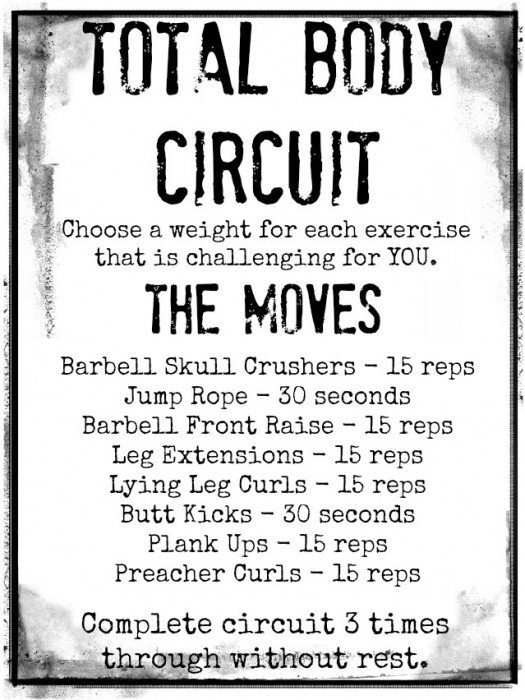 Total Body Circuit - meals & moves
